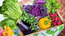 تاثیر رژیم غذایی قلیایی بر بدن
