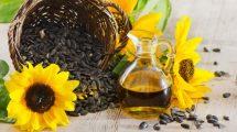 خواص درمانی تخمه آفتابگردان