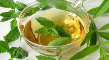 فواید شگفت انگیز چای سبز برای سلامتی