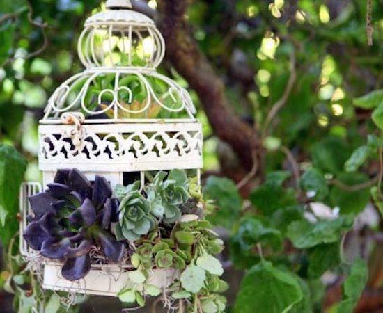 قفس گل تزیینی